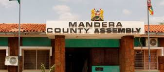 Honorable kicks and fists as Mandera MCAs fight over executive members' list