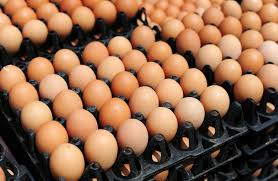 Unkown people steal eggs at the home of deputy president William Ruto in Eldoret