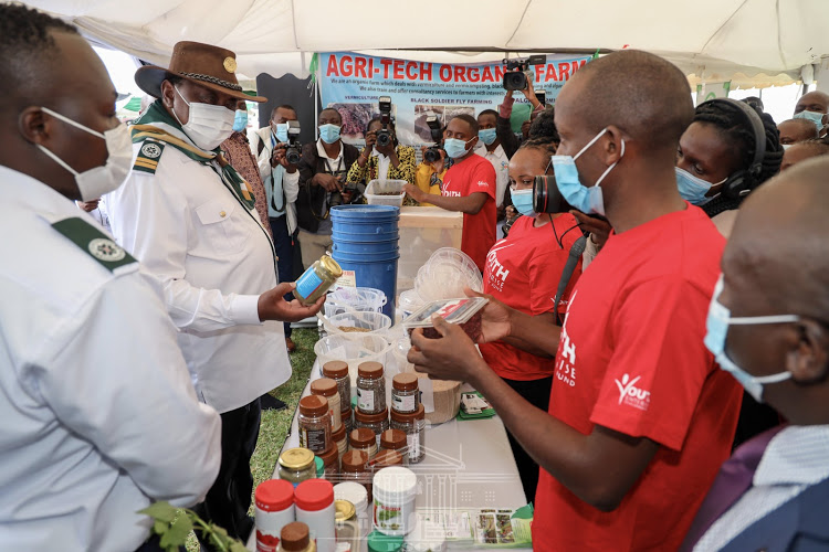 Empowering the youth: Uhuru launches  Sh2.2 billion youth agribusiness programme